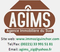 logo_agims